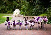 Wedding / by Rachel Wisner