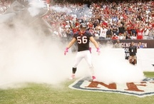Houston Texans / by Megan Williams