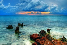 Caribbean  / by GT-R Zilla