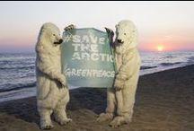 #Save the Arctic / Il ghiaccio artico da cui tutti dipendiamo sta scomparendo. Velocemente. Negli ultimi 30 anni, abbiamo perso tre quarti della calotta di ghiaccio che galleggia in cima al mondo. Per salvare l'Artico dobbiamo agire oggi. www.savethearctic.org / by Greenpeace Italia