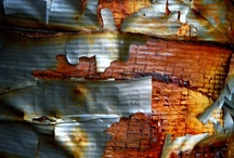 rust, decay, peeling paint I / by Pat Carr