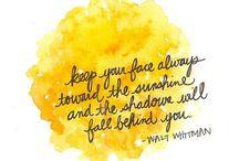 Perfect quotes :) / by Nihan Senbursa