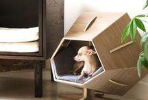 Casas para Mascotas / Ideas con estilo para la casa de tus mascotas #Ambar #Muebles / by ÁmbarMuebles