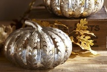 Autumn Deco / by Dalania Chrzanowski