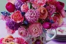 flowers / flowers / by Janet Holt Liefbroer