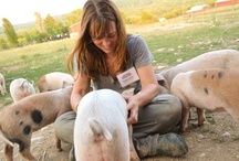 People We Love / Awesome people who support Farm Sanctuary! / by Farm Sanctuary