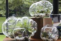 My glass world / Handmade glass beads in my own studio / by Burcu Tansug Ozgoren