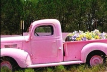 ♡Cars and Trucks♡ / by Jen Knutson