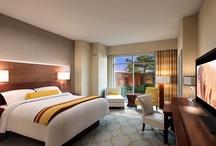 Lodging / Coushatta Casino Resort's Hotels - Kinder, LA / by Coushatta Resort