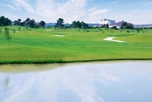 Golf / Koasati Pines at Coushatta Casino Resort- Kinder, LA.  / by Coushatta Resort
