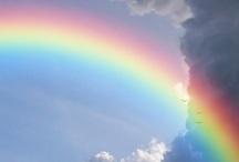 Rainbows / by Carmen Williams