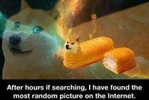 Funny! LOL / by Lyssypoo ∞