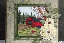 card ideas / by LeeAnn Sutherland