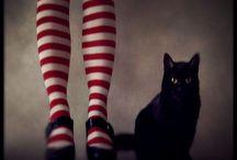Halloween / by Vikki Lynne