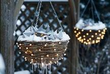 Christmas / by Vivian Blair