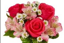 Flower Arrangements / Popular flower arrangements from FromYouFlowers.com / by From You Flowers