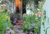 garden greens / by marty lloyd