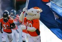 Miles the Mascot / by OFFICIAL Denver Broncos