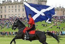 Scotland  / by Velveteen Tigress