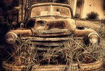 Junkyard Dogs / by Car Show Safari