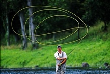 fly fishing / by Jeri King