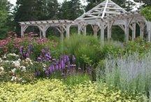 Landscapes of Coastal Maine Botanical Gardens / by Coastal Maine Botanical Gardens
