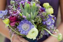Wedding Flowers / by Coastal Maine Botanical Gardens