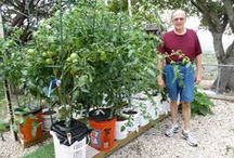 Amazing Container Gardening! / Learn About Cutting Edge Gardening Techniques! The Self Watering Rain Gutter Grow System, The Kiddie Pool Grow System,The Pop Bottle Garden, also the Hybrid Underground Rain Gutter Grow System! And More! / by Larry Hall