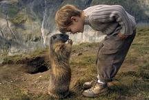 Animals / by Dogwood Alliance