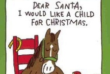 My Horse's Wishlist / What is on your horse's list for Christmas this year? Share your pony's deepest desires here! / by Greenhawk Inc.