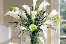 Floral arrangements / by Babs Keller