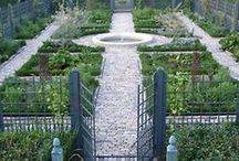 Gardening / by Patricia Sharpe