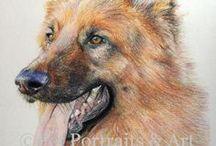 Art - Animal Portraits / by Cheetah