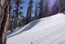 Kirkwood Mountain Resort  / Nor-Cal's premier POW-Hunt'n terrain!  / by Kirkwood Mountain