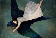 Enchantment for Dreaming / by Barbara Magyar