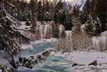 Winter Wonderland / by Ann Davis