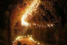 Iluminación jardines / by Manuel de la Fuente