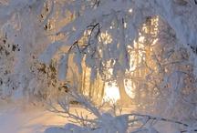 Let it Snow! / by The Body Shop Polska