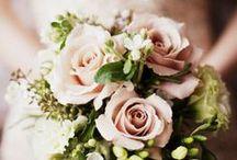 Wedding Bouquet / by Yamilette Arana