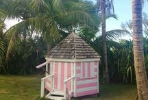 """Jungle Sweet Jungle / Did you know that they called Lilly Pulitzer's house """"the jungle""""? Here are our """"jungle"""" & beach home inspired ideas! / by The Peppermint Palm, Lilly Pulitzer"""