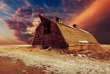 Barns / by Donna Turner