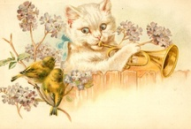 Vintage cats II / by Solveig Strand