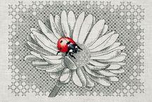 Embroidery / by Laya Padigala