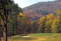 Golfing / Come to the mountains and play a round of golf! Then spend the night at one of our resorts and enjoy a spa or farm to table dinner. You're sure to find a challenging course to take a run around! / by Explore Rabun, North Georgia Mountains
