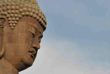 ME ◈ Zen / Yoga, meditation, books, random acts of kindness, non-profits, etc. / by ⋘◈ vagabond zen ◈⋙