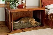 DIY Pet Decor / Ideas for your 4 legged pet! / by Essex Homes Jenn Weldon