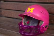 Pretty in Pink / Michigan student-athletes donning pink in support of Breast Cancer Awareness.  / by Michigan Athletics