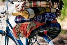 Mad for Plaid / Fall 2014 / by Tracy R