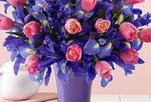 цветы / by olga nedogreev