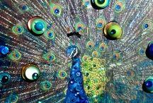 Peacock everything / by Trish McNaughton